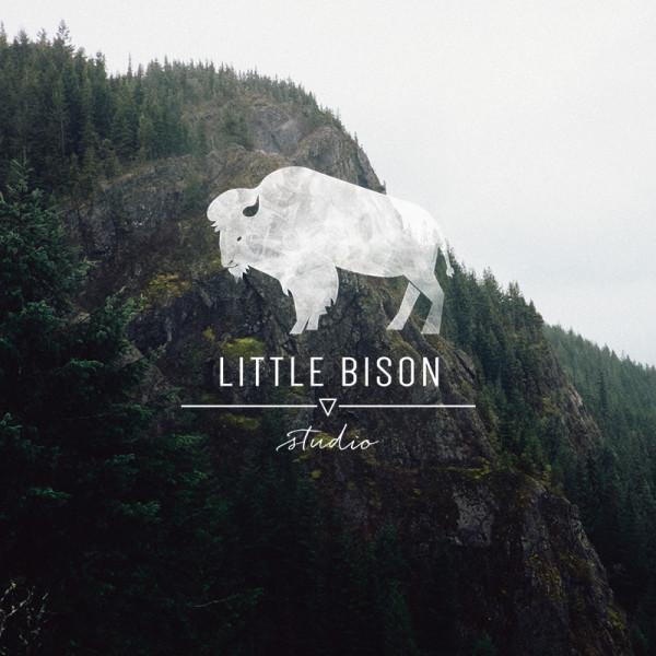 Little Bison Studio