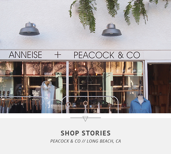 Shop Stories: Peacock & Co / Little Bison Studio