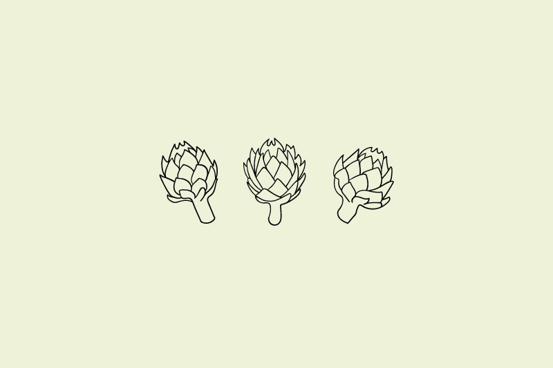 Artichokes Illustration / Little Bison Studio