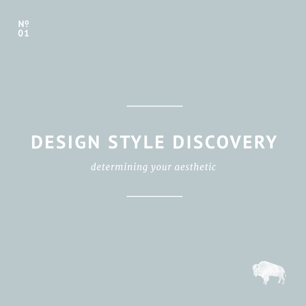 Design Style Discovery / Little Bison Studio